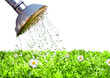 canvas print picture - Rasenpflege im Garten