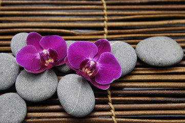 Red two orchid with stones on bamboo stick straw mat