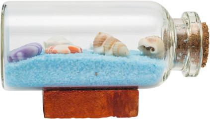 Shells In Bottle