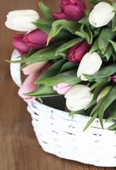 Korb voller Tulpen