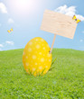 Easter egg with blank board on spring meadow