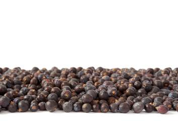 Juniper Berries Horizontal Group