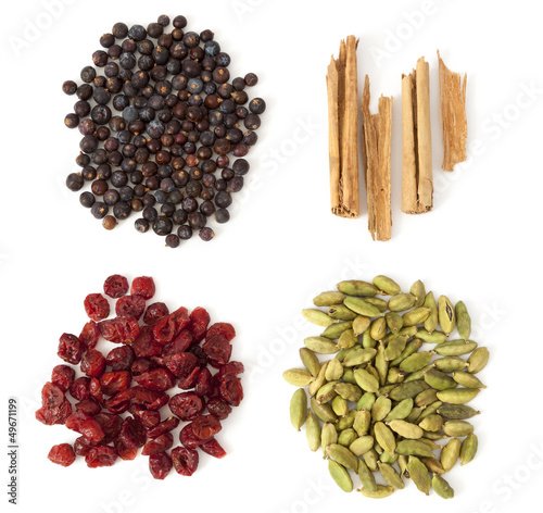 Four Spices and Berries for Gin Tonic