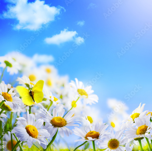 canvas print picture spring background