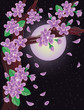 Cherry blossoms on night sky background, vector