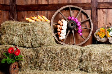 The interior of the building of the village. Wheel, hay, bucket,