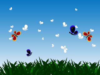Butterflies and grass against the sky