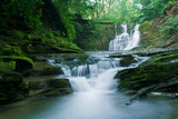 Fototapeta natura - natura - Rzeka