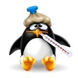 pinguino influenzato
