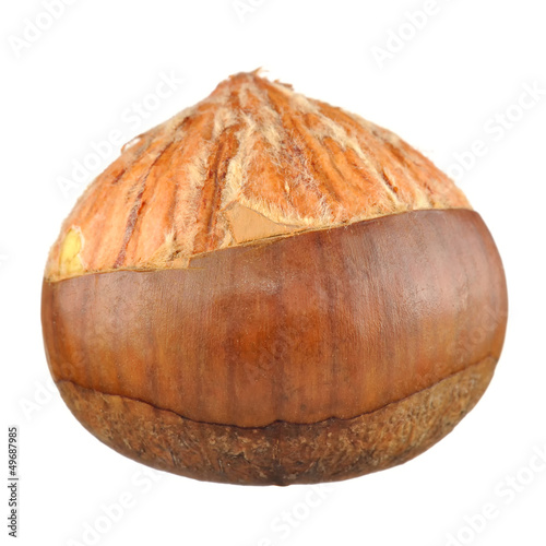 Half Peeled Chestnut Isolated on White Background
