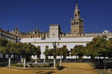 La Giralda and Cathedral of Seville from the Alcazar