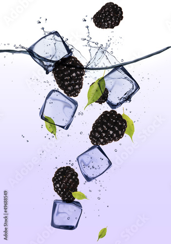 Foto op Canvas In het ijs Blackberries with ice cubes