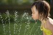 Leinwanddruck Bild - Child drinking from the water fountain