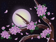 Sakura blossoms on night sky background, vector