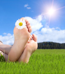 Naked feet in grass with daisy