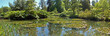 Panorama of a pond