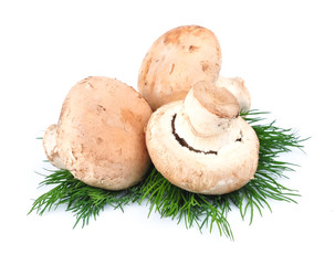 Mushrooms with fennel