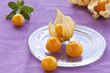 physalis on a glass(horizontal)