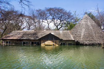 Flooded house at Lake Baringo, Kenya