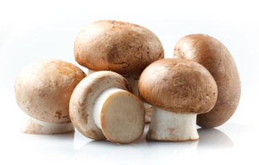 Mushroom. royal champignons on a white background