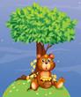 A bear holding a honey under a tree