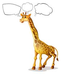 A giraffe with empty callouts