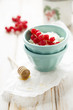 Fresh cottage cheese with red currant and honey