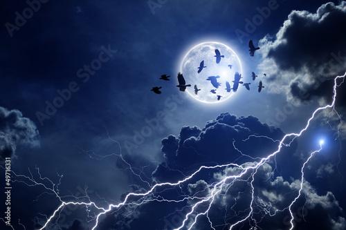 Stormy sky, flock of ravens - 49716331