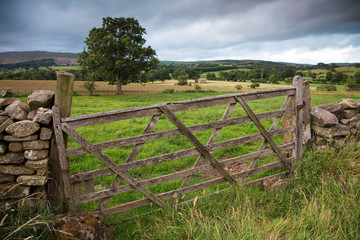 Wooden Farm Gate, England