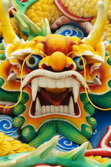 Colourful Serpent Head
