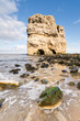 Marsden Rock and shore
