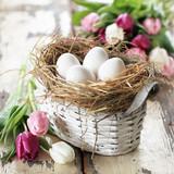 Fototapeta Osterkörchen mit weißen Eiern
