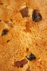 Panettone close-up (Texture)