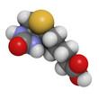 Vitamin B7 (biotin) molecule