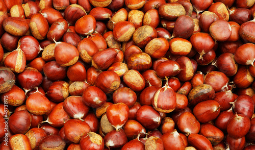 Pile of Brown Chestnuts