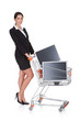 Attractive Businesswoman Shopping Lcd Monitors
