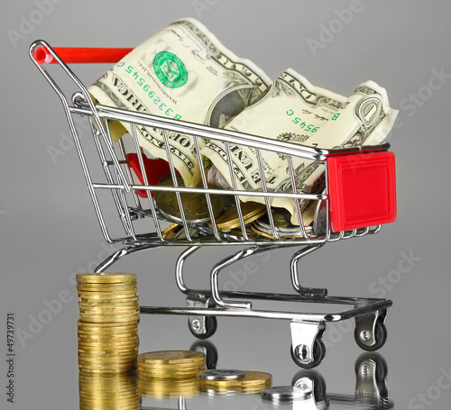 Money in cart on grey background