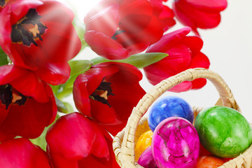 Ostergrüße mit Tulpen