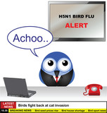 Bird News Desk with H5N1 bird flu story