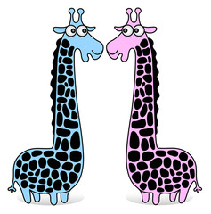 giraffes blue and pink