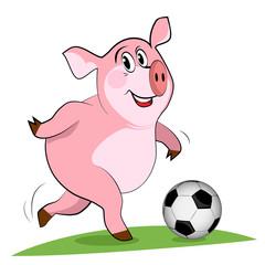 Pig play a football. Soccer player.