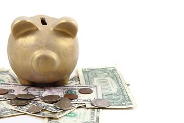 gold pig bank and dollars