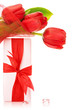 Red tulip bouquet with present