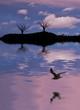 el lago de los arboles muertos