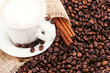 The coffee beans, a cup of coffee.