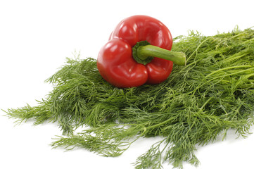 Red pepper with fresh green coriander