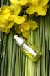 Yellow orchid and parfume bottle