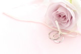 close up of purple rose and pair rings  for wedding image - Fine Art prints
