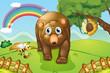 A big brown bear at the hills