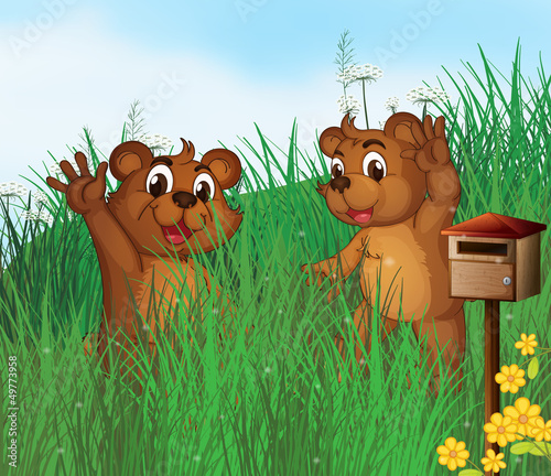 Plexiglas Beren Two young bears near a wooden mailbox